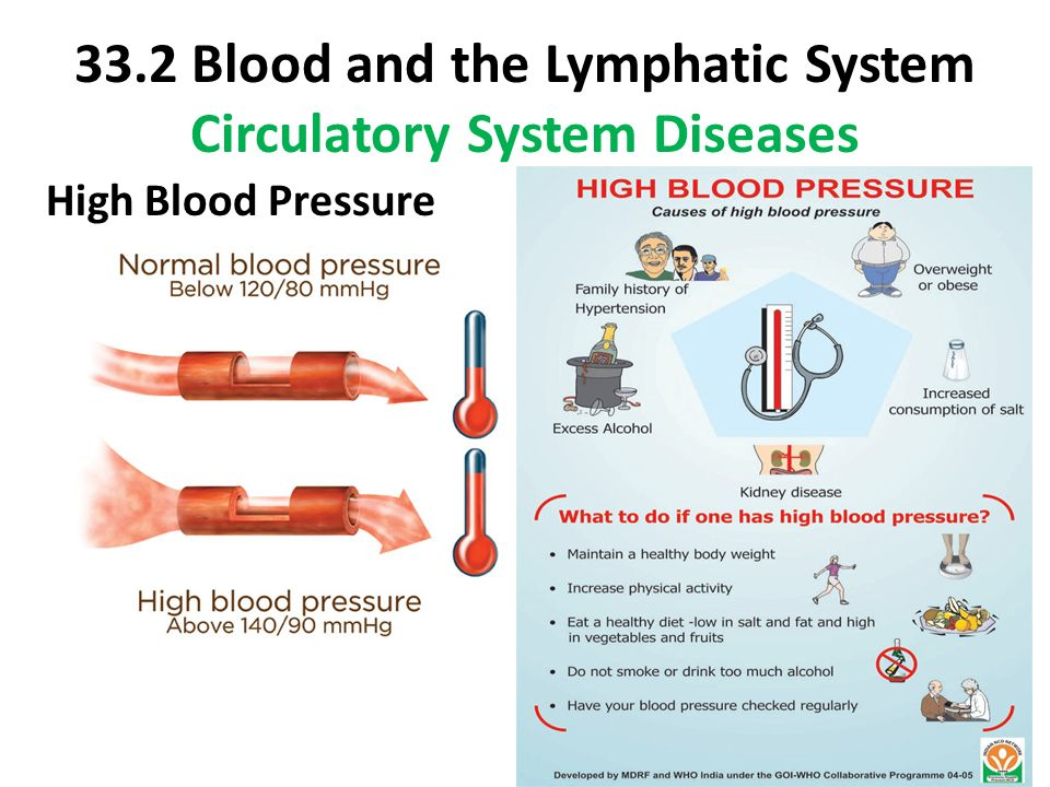 blood and lymph system The lymphatic system drains extra fluid (called lymph) that has passed out of the blood and into tissues and returns it back to the blood the lymphatic system is a circulatory system made up of lymph vessels much like blood vessels.