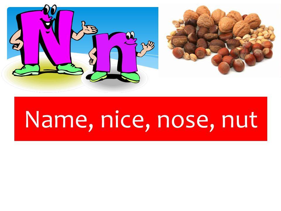 Name, nice, nose, nut