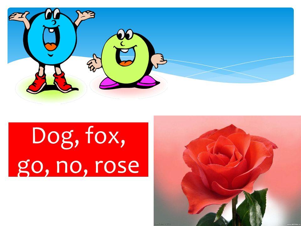 Dog, fox, go, no, rose