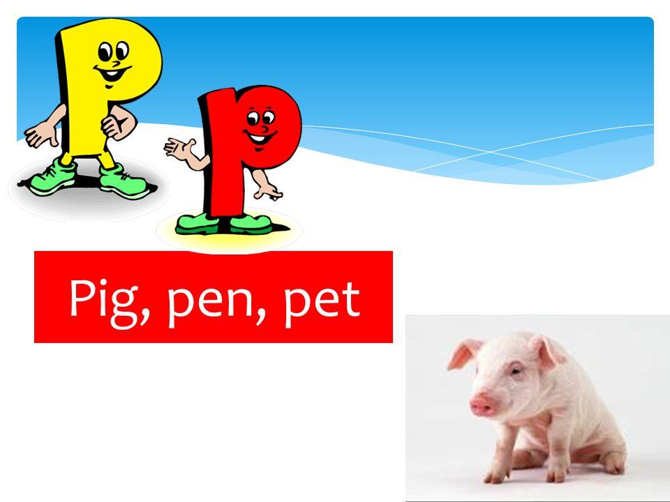 Pig, pen, pet