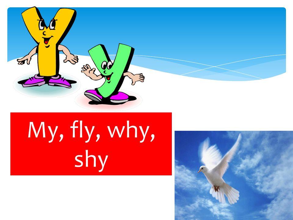 My, fly, why, shy