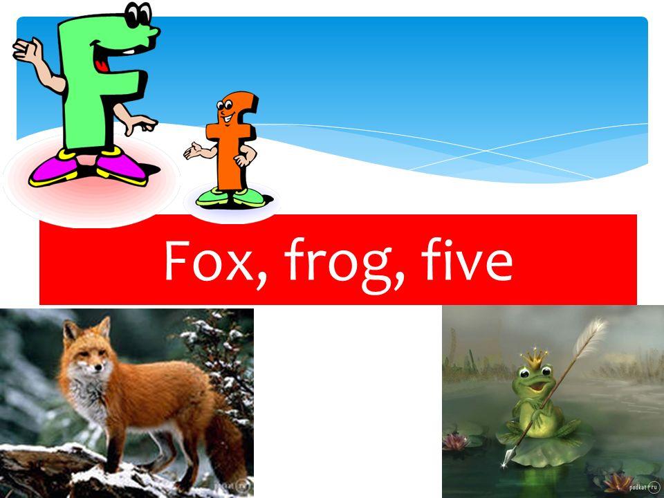 Fox, frog, five