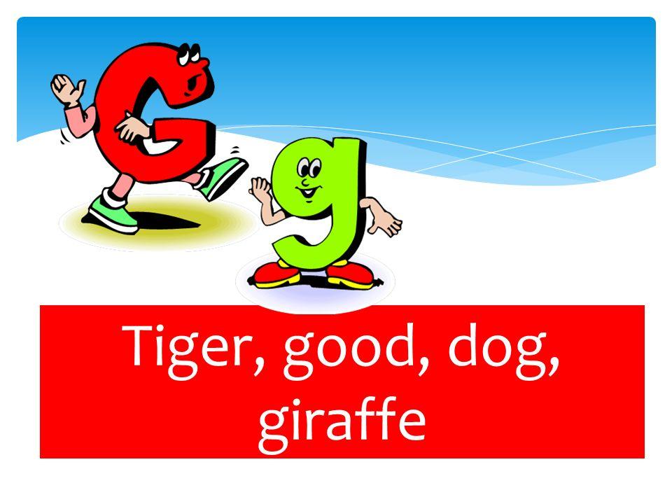 Tiger, good, dog, giraffe