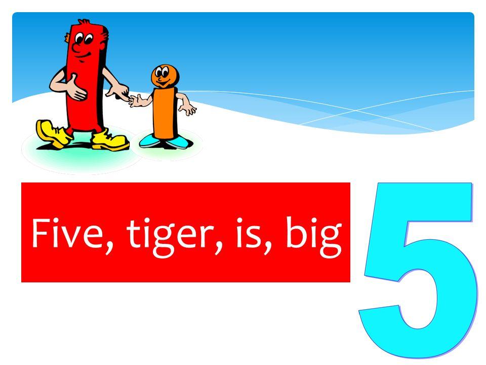 Five, tiger, is, big