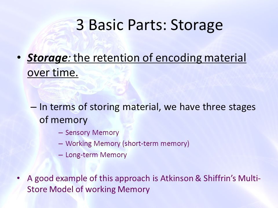 an analysis of the encoding and retrieval of information stored in short term memory Minder of our dependence on memory,the internal repository of stored information 196 chapter 5 encoding and retrieval from long-term memory.