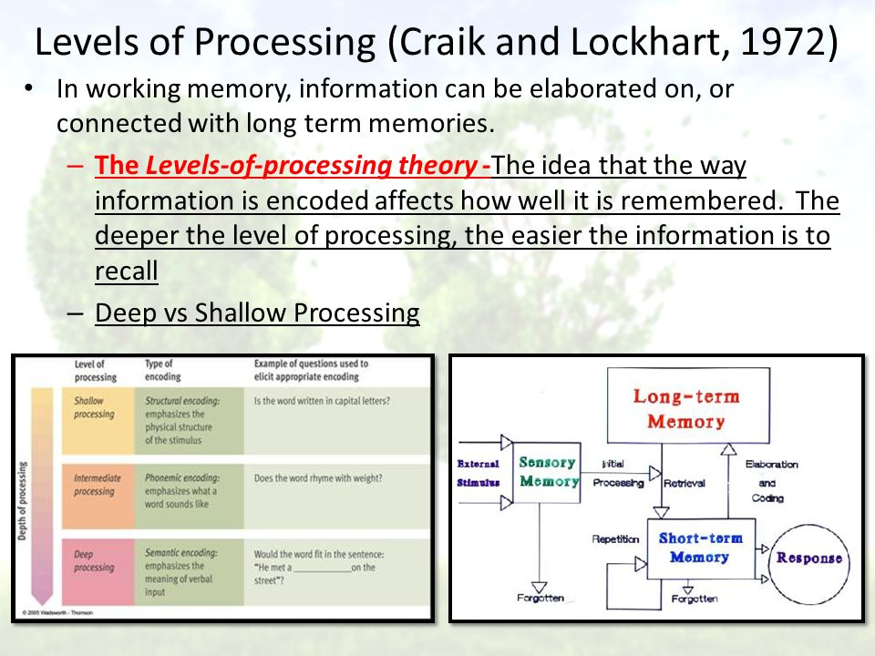 craik and lockhart a theory of the levels of processing and memory A multicomponent theory of the memory trace  craik, fim, & lockhart, rs levels of processing: a framework for memory research  recall of sentences after.