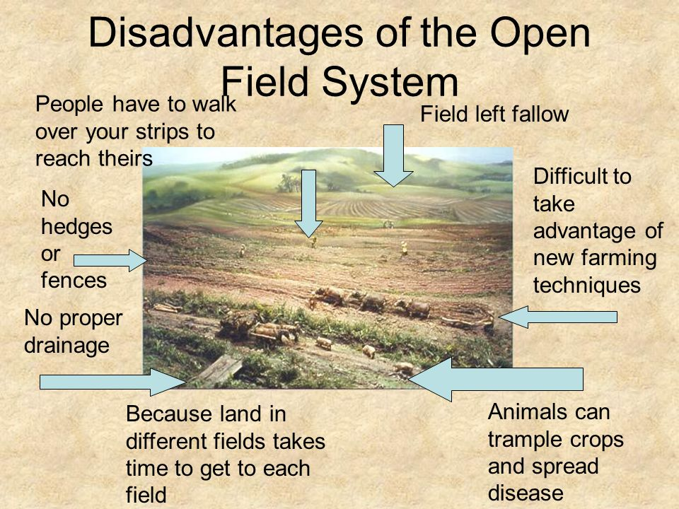 define open field farming To dream of an open field study your dream interpretations with dream dictionary: open field in dreams explore the open field in dreams analysis provided and.