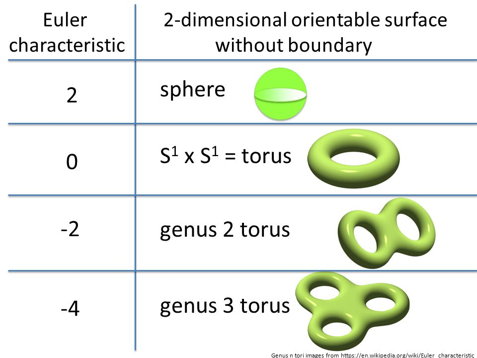 Euler Characteristic Simple Form Ppt Download