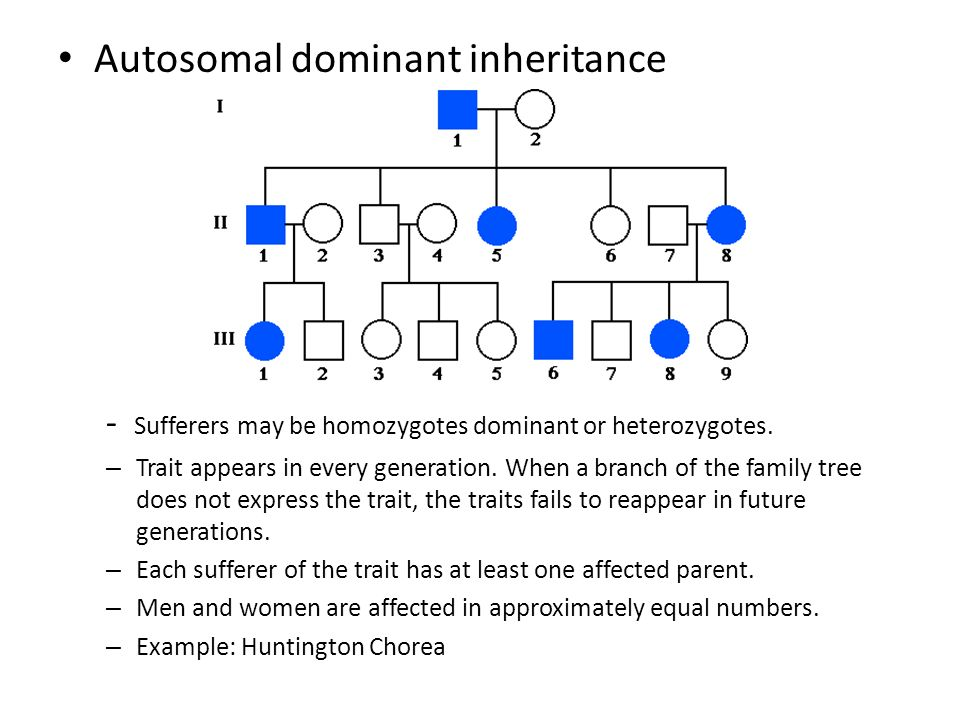 a brief introduction to huntingtons disease an inherited and an autosomal dominant disease Overview and genetic inheritance huntington's disease  this condition is inherited in an autosomal dominant  on the home page you could give a brief summary.