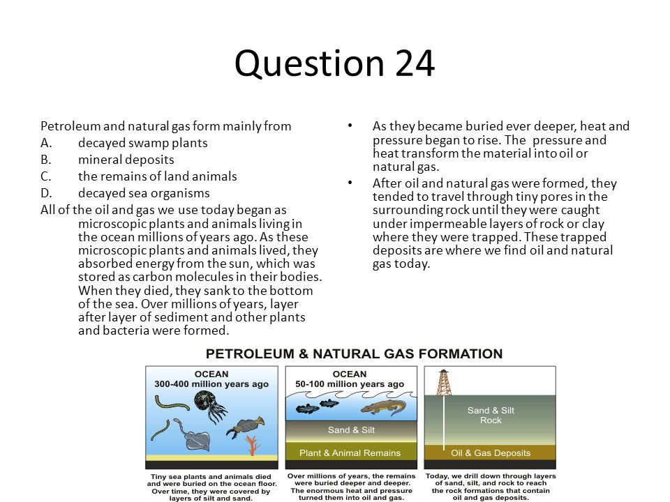 Energy Resource Review Guide - ppt download