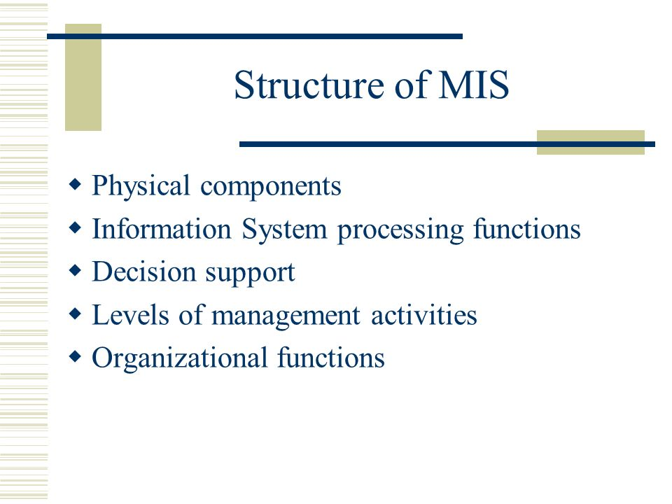 components of mis