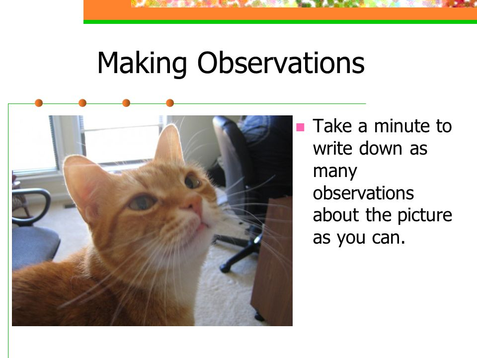 how to write observations for a lab