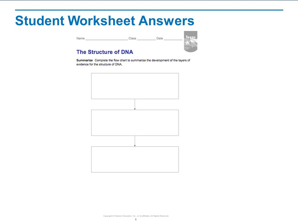The Structure of DNA Read the title aloud to students ppt download – Structure of Dna Worksheet