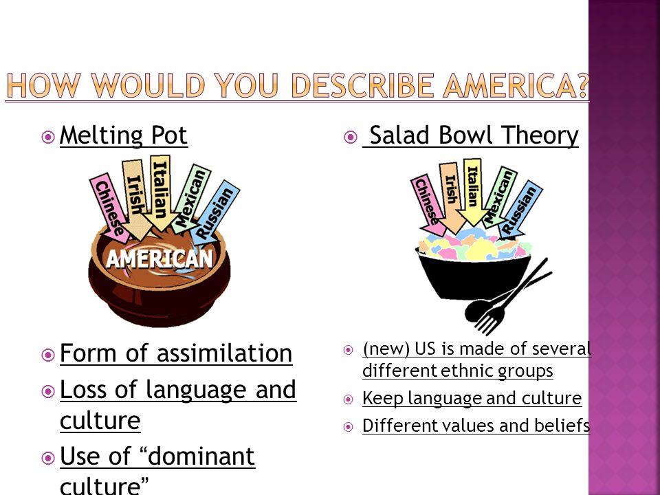 Salad bowl and melting pot
