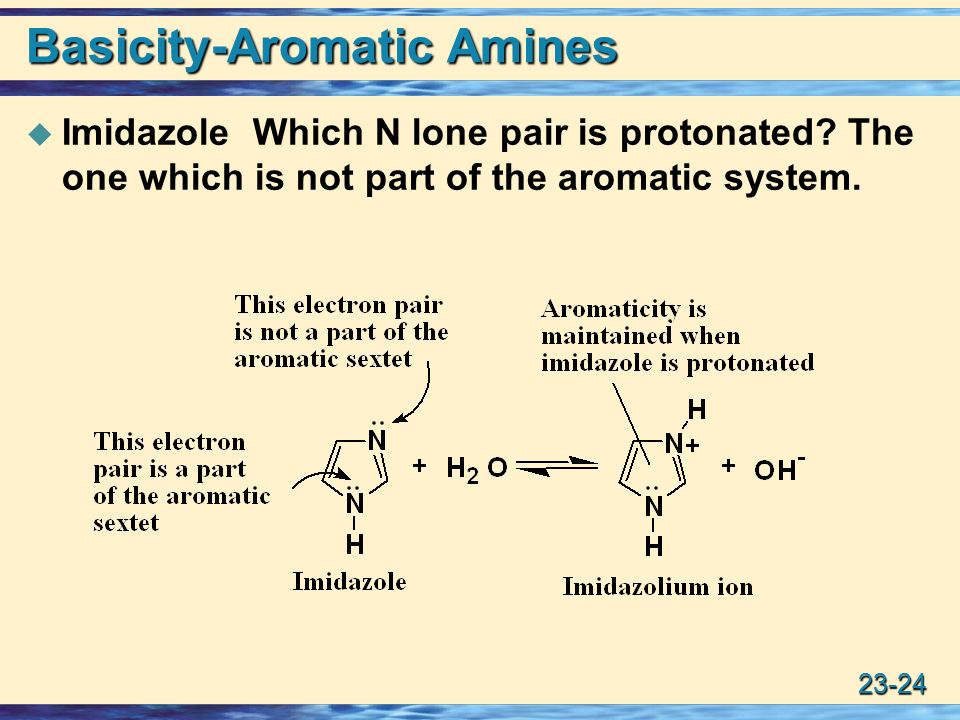 Amines Ppt Download