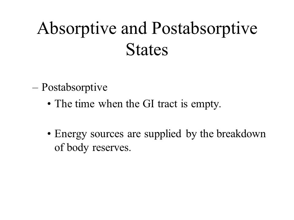Understanding the absorptive and post absorptive states during meals