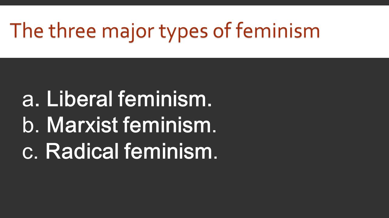 the different types of feminists Woman participation in different fields such as economic growth, cultural   feminism by giving its definition and origin in addition to its different types that are.