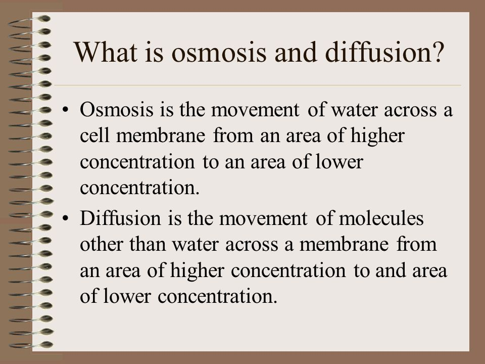 diffusion and osmosis of a potato Free diffusion and osmosis in potatoes papers, essays, and research papers.