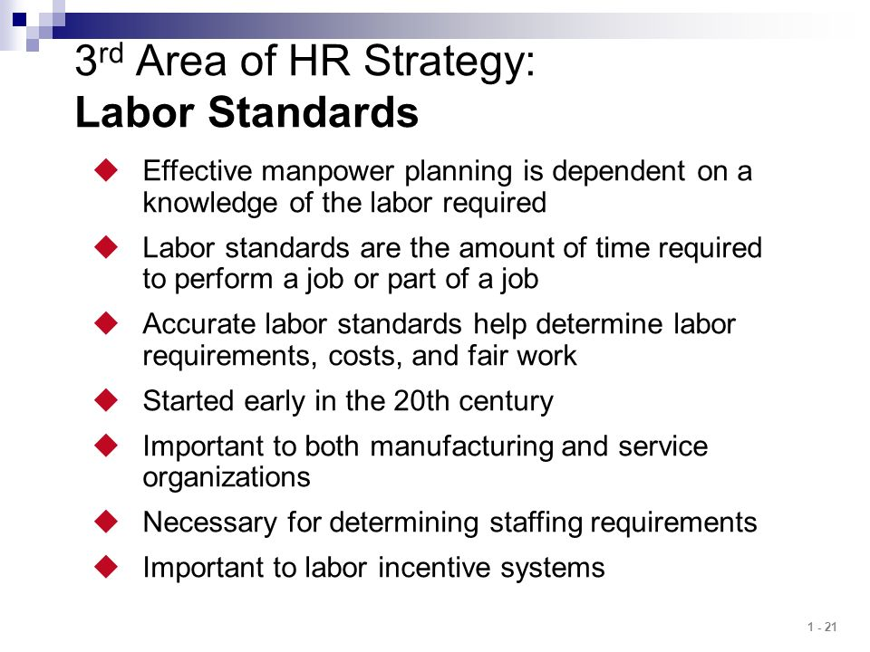 3rd Area of HR Strategy: Labor Standards