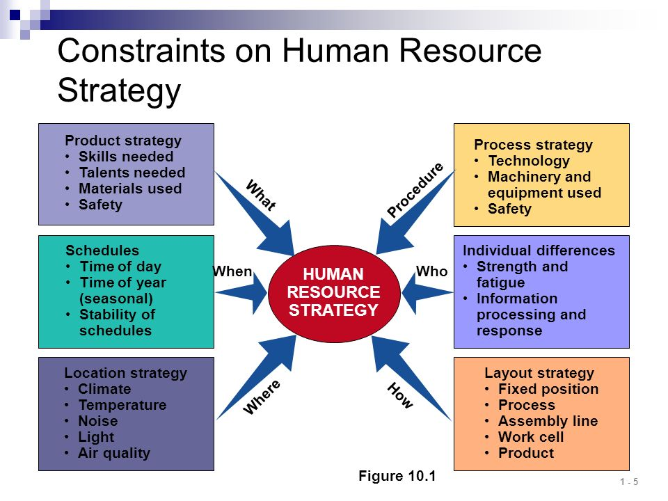 Constraints on Human Resource Strategy