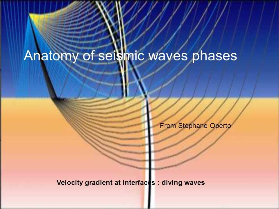 Anatomy of seismic waves phases
