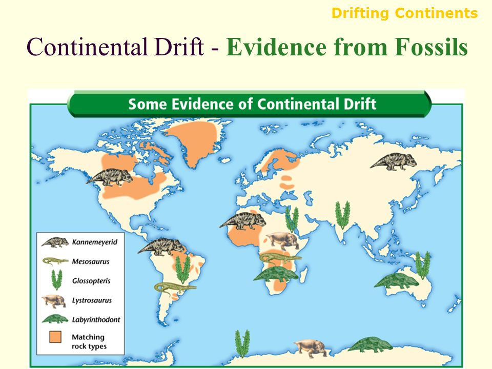 Evidence Of Continental Drift Pdf