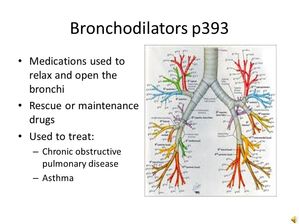 chapter 37 bronchodilators and respiratory drugs