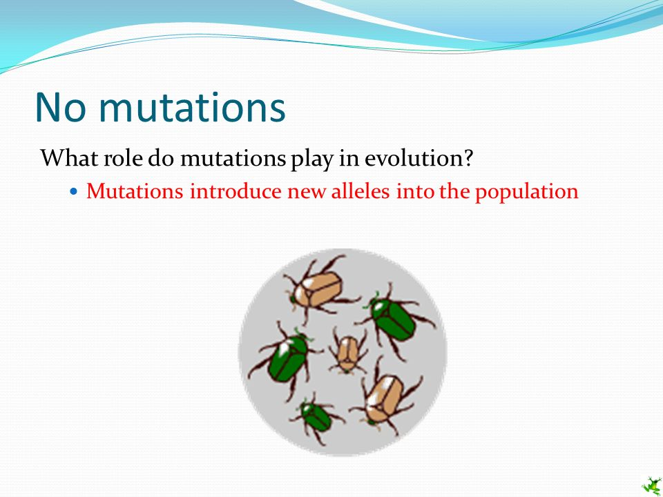 How Do Mutations Play A Role In Natural Selection