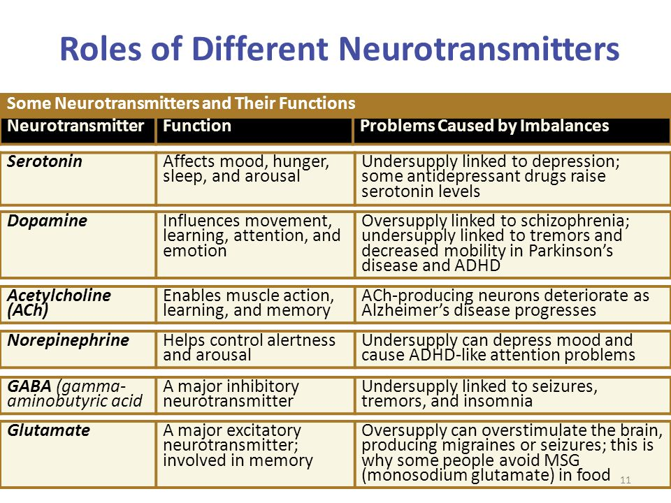 Neurotransmitters In The Brain And Their Functions | www ...