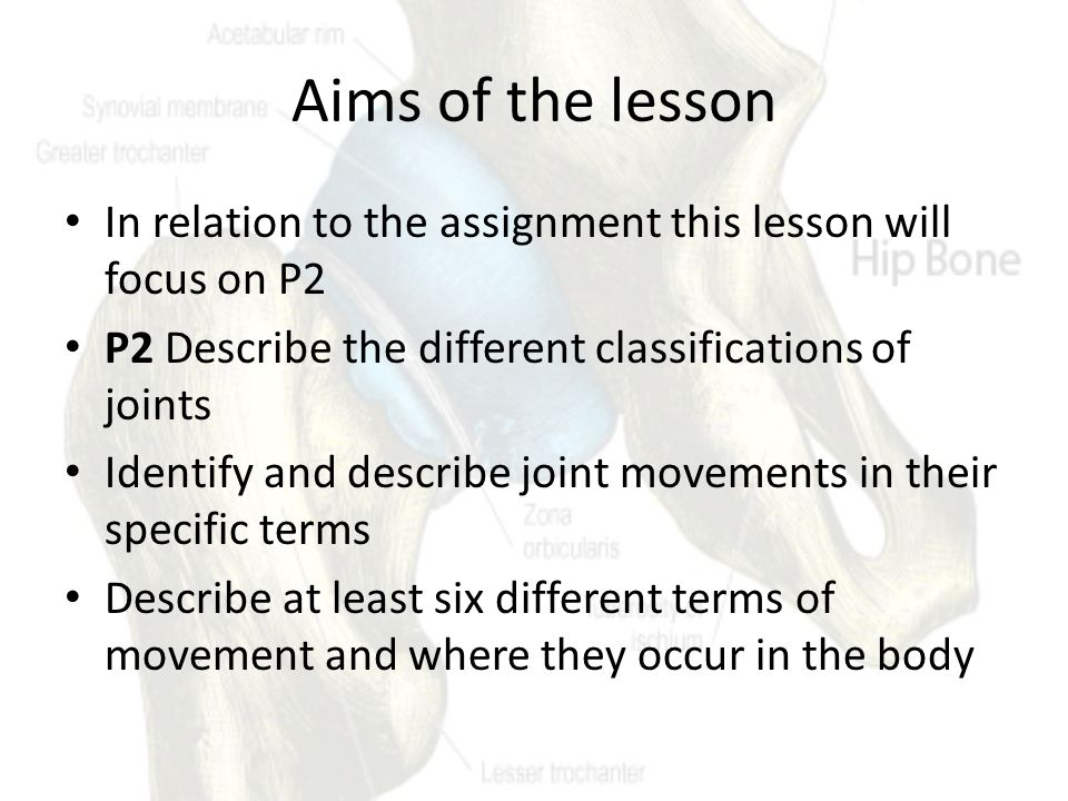 Unit 1 Principles Of Anatomy And Physiology In Sport Ppt Download