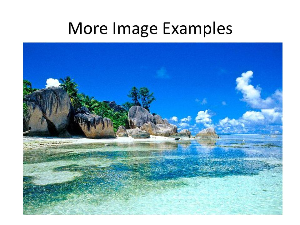 More Image Examples