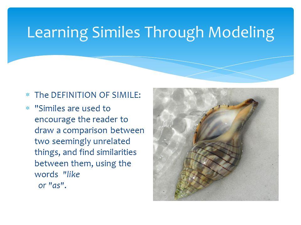Seashells And Similes Meeting Notes 11 14 12 16 24 Ppt