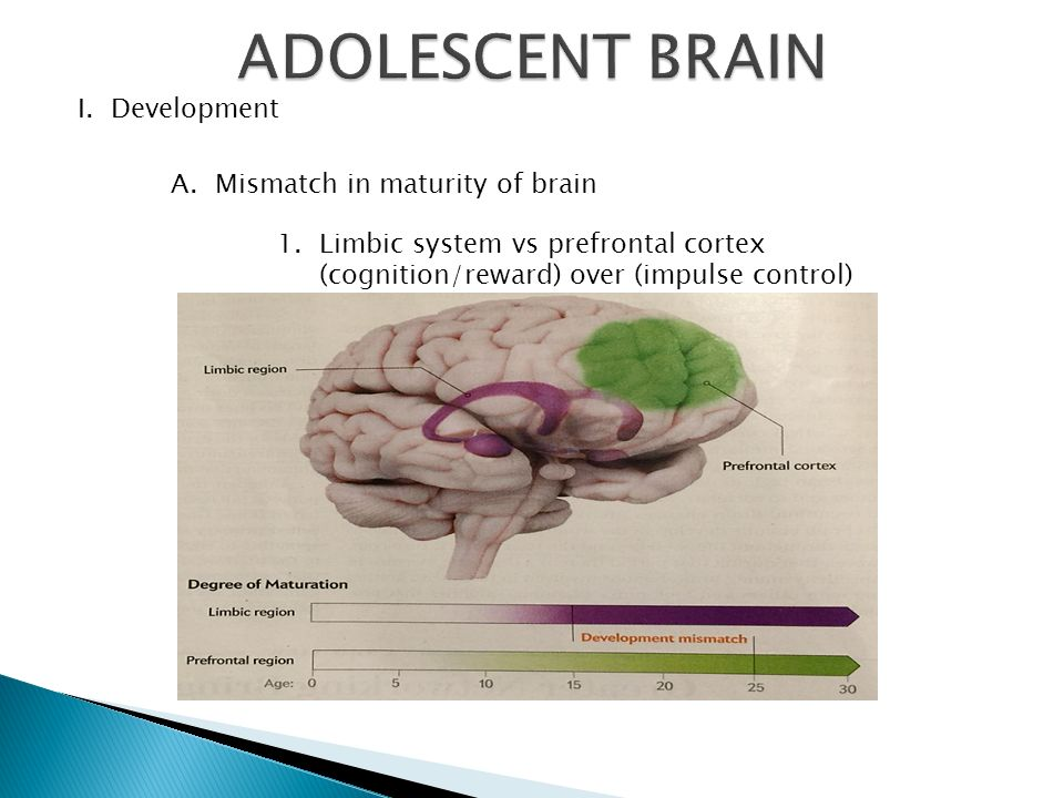 maturation of the adolescent brain Moved permanently the document has moved here.