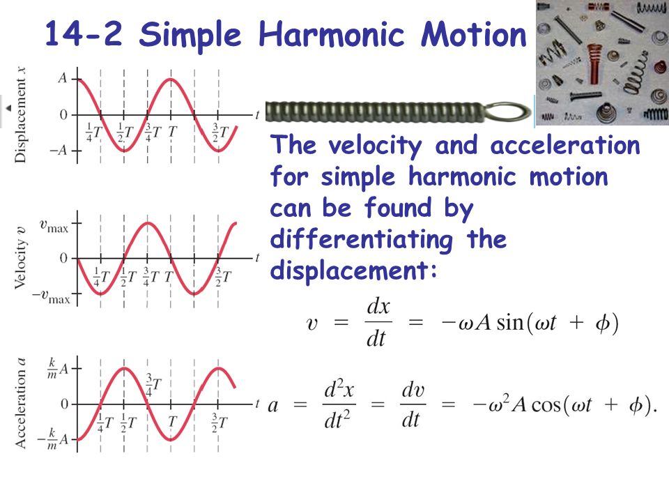 simple harmonic motion Equipment needed science workshop interface clamp (for holding the spring) +/-50 newton force sensor masses and mass hanger motion sensor.