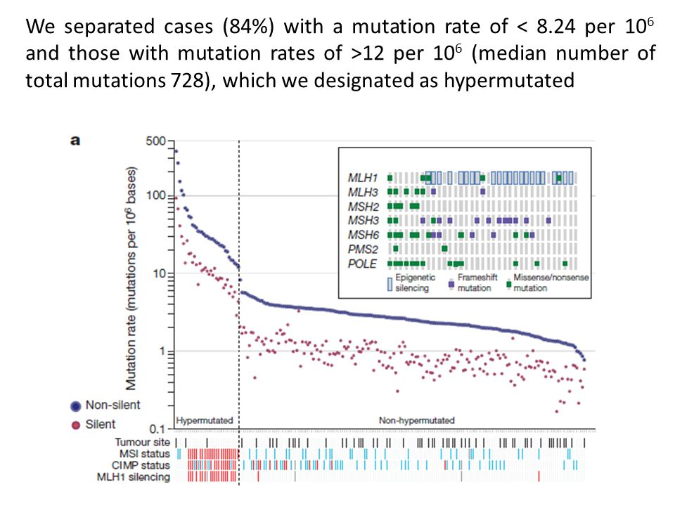 We separated cases (84%) with a mutation rate of < 8