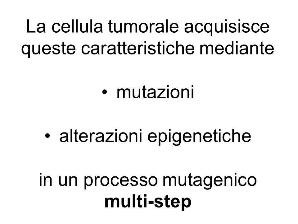 La cellula tumorale acquisisce queste caratteristiche mediante