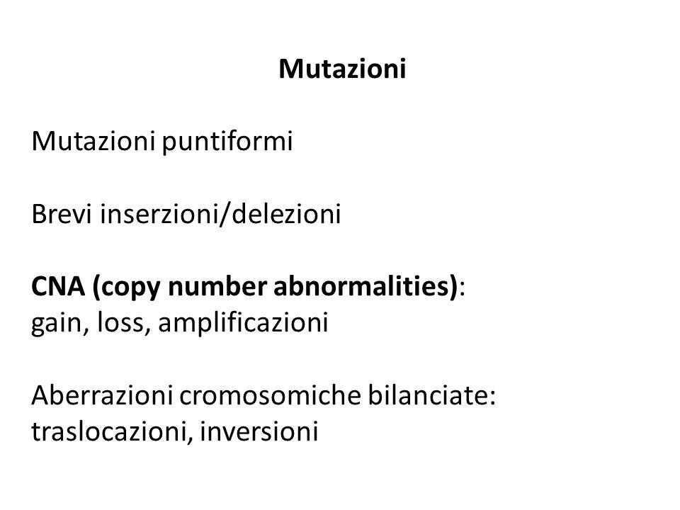 Mutazioni Mutazioni puntiformi. Brevi inserzioni/delezioni. CNA (copy number abnormalities): gain, loss, amplificazioni.