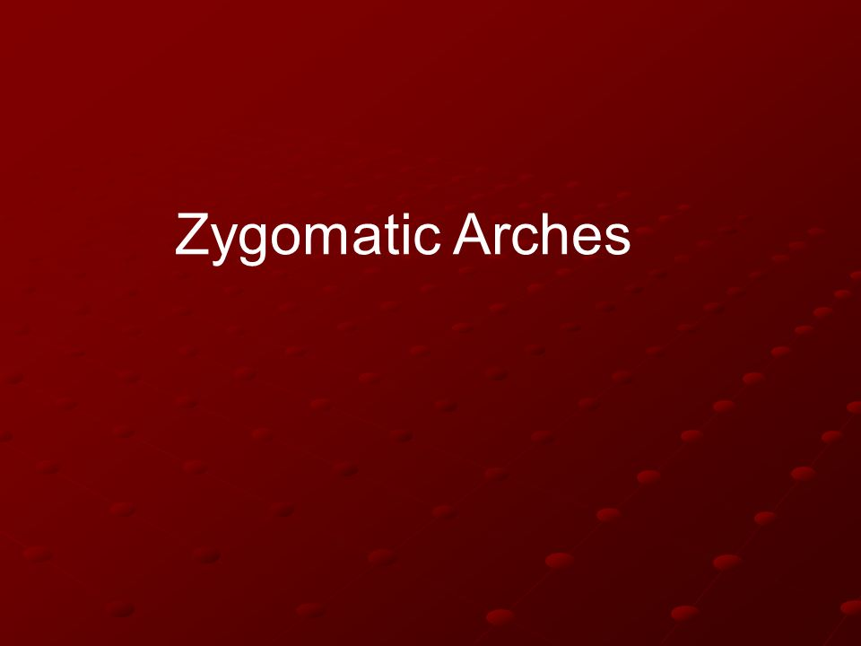 Zygomatic Arches