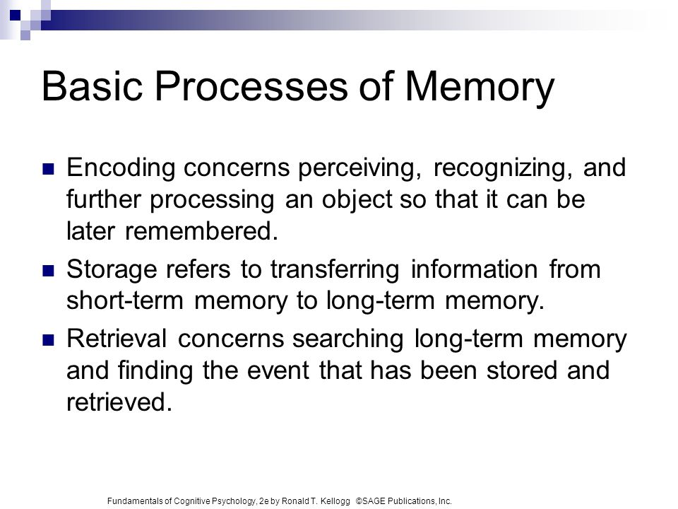 an analysis of the encoding and retrieval of information stored in short term memory – cannot identify word until we have heard whole sound so accoustical information must be stored temporarliy until all sounds have been received evidence from partial reporting shows that it lasts less than 4 seconds short-term or working memory encoding of information: interaction with long-term memory information can enter st memory.