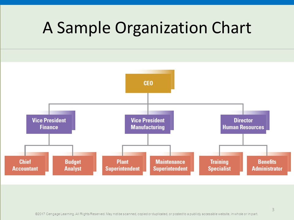 different fundamental of organizing chart: Fundamentals of organization structure ppt download