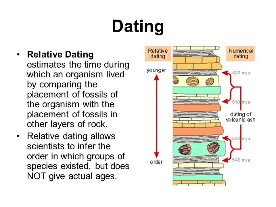 online dating site for scientists
