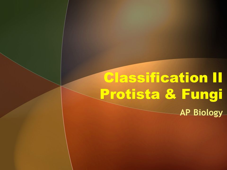 Chapter 28: Protists - AP Biology Croson 2012 13 with ...