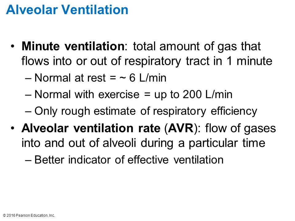 explain the importance of the change in minute ventilation with exercise Respiratory activity essay or not change with exercise of course the minute ventilation increase explain the change in erv with exercise the erv.