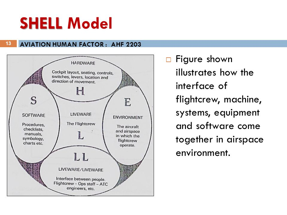 the shel model of human factors