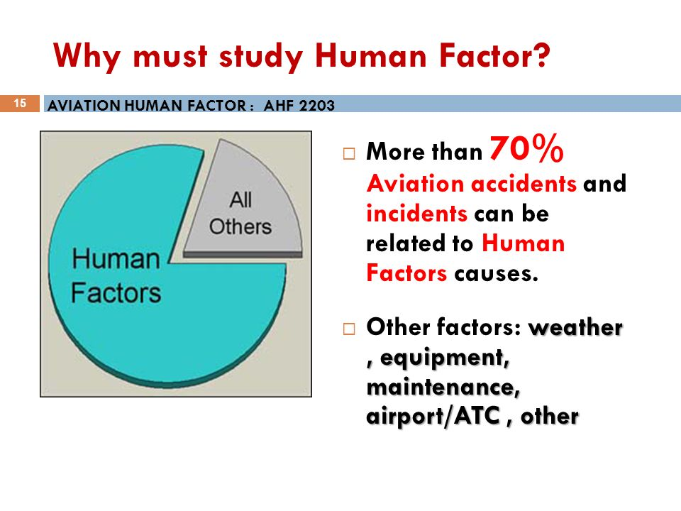 Human Factors In Aviation Essay Sample