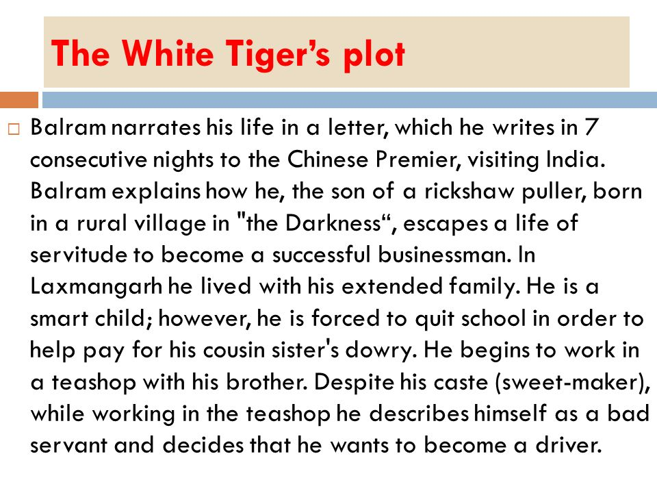 The White Tiger's plot