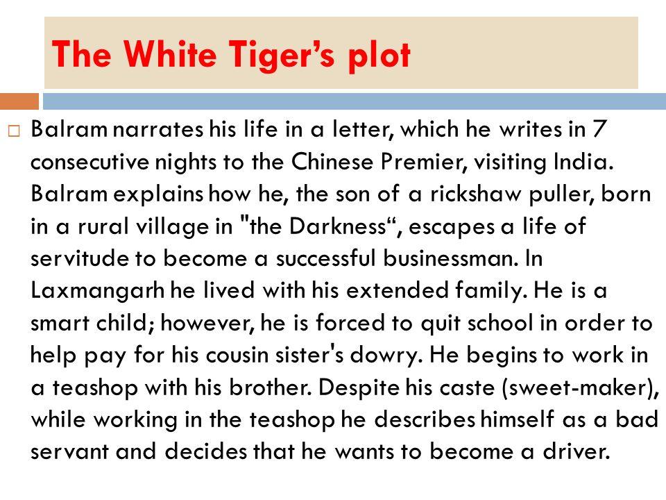 The White Tiger's plot