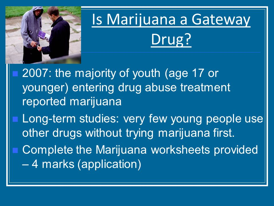 is marijuana gateway drug The gateway effect, if it exists, has at least two potential and quite different sources (maccoun, 1998) one interpretation is that it is an effect of the drug use itself (eg, trying marijuana increases the taste for other drugs or leads users to believe that other substances are more pleasurable or less risky than previously supposed.