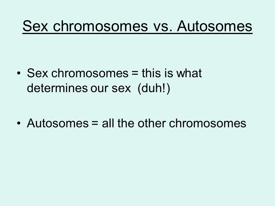 autosomes vs sex chromosomes