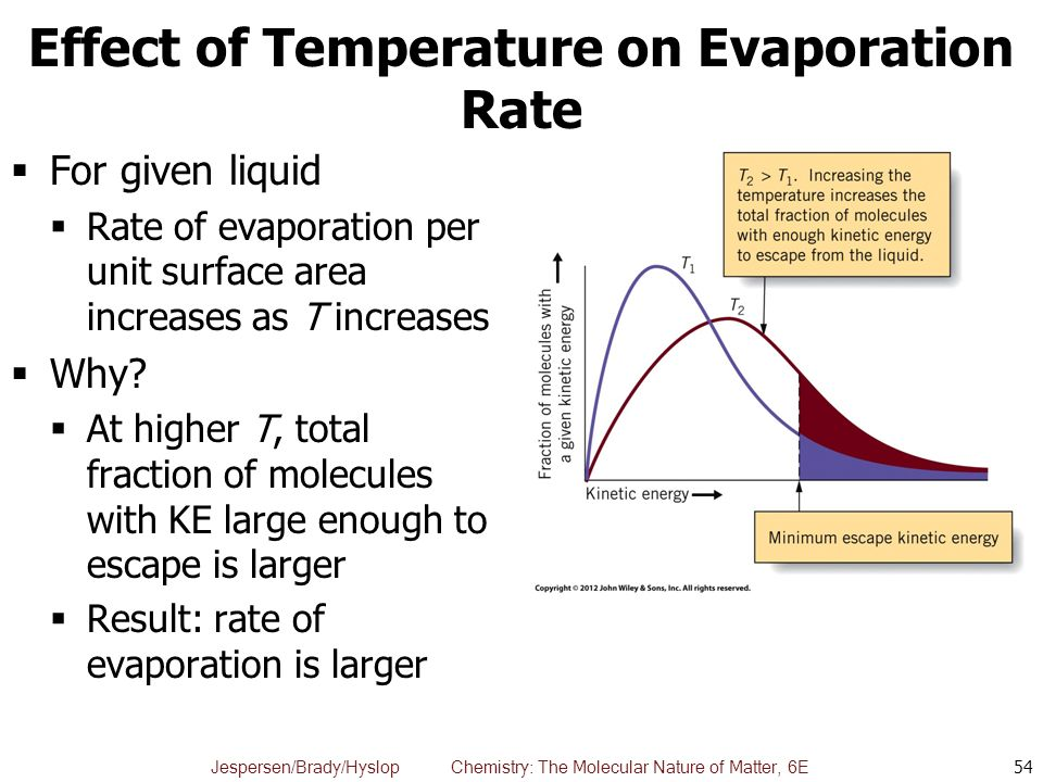 effect of surface area on heat loss The physics of pool temperature:  swimming pool heat loss occurs primarily at the surface  the net result in the central florida area.